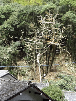作杣人-1.jpg