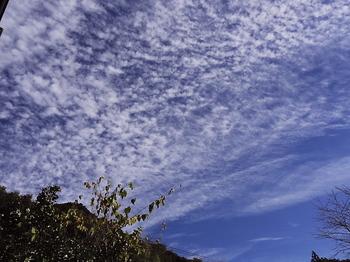 雲-1.jpg